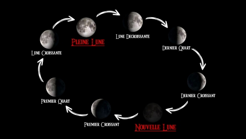 timing, phases de la lune